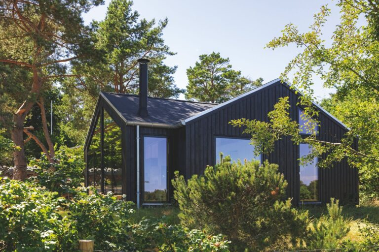Modern Scandinavian tinyhouse with tall windows and wood interior